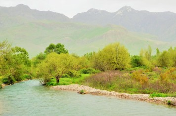 ahmed awa-ruisseau zalm